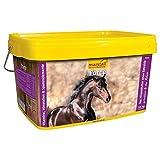 marstall Premium-Pferdefutter Force, 1er Pack (1 x 10 kilograms)
