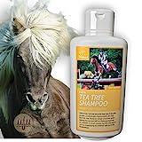 Teebaumöl Pferdeshampoo I Hundeshampoo I Pflegeshampoo Teebaum-Öl Juckreiz I Shampoo für Pferde...