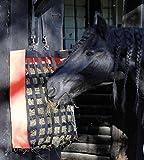 Reitsport Amesbichler Harry`s Horse Heusack Heutasche Heunetz ORANGE Futtertasche Futtersack...