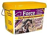 marstall Premium-Pferdefutter Force, 1er Pack (1 x 4 kilograms)
