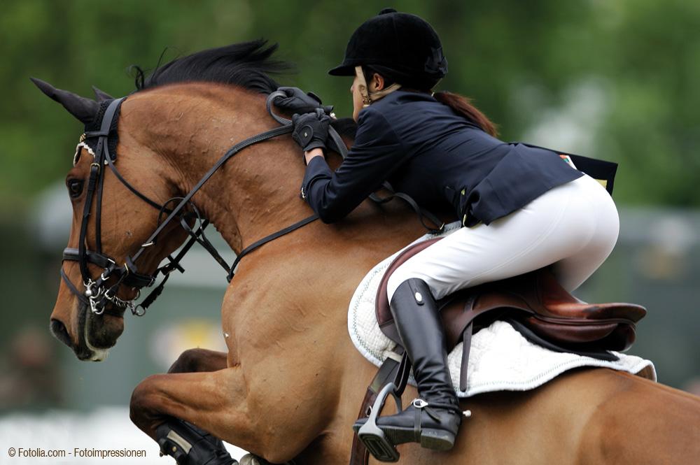 Der Reithelm ist ein muss für jeden Reiter