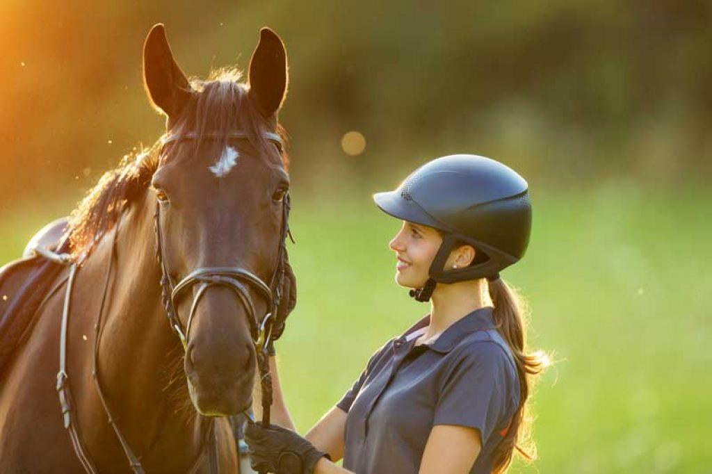Leidenschaft Pferde