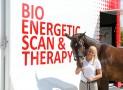 Innovative neue Therapie für Pferd und Reiter Was macht die EQUUSIR BEST Box?