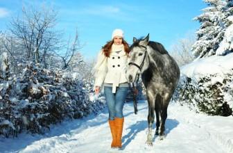 Es wird kälter – jetzt brauchst Du und Dein Pferd folgendes
